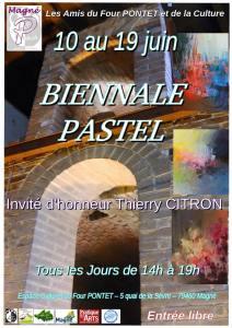 1er Salon de Pastel de Magné (79) - 2016